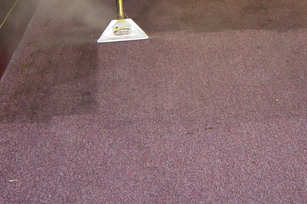 Steam Carpet Cleaning Watsons Creek