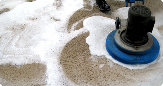 Same Day Carpet Cleaning Service in Melbourne