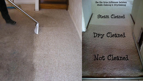 Carpet Steam & Dry Cleaning Melbourne