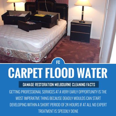 Carpet-Flood-Water-Damage-Restoration-Melbourne Airport-Cleaning-Facts