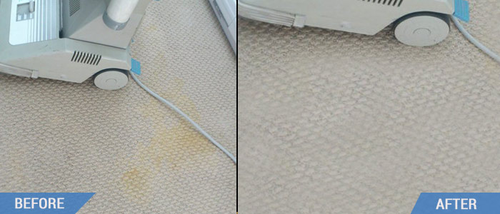 Carpet Cleaning Vervale