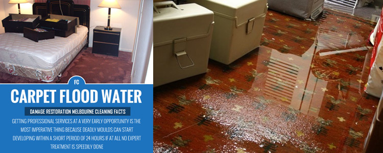 Carpet flood water restoration Melbourne