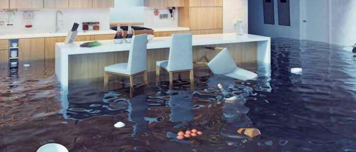 Best Water Flood Damage Carpet Restoration