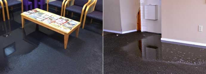 Flood Water Damaged Carpets