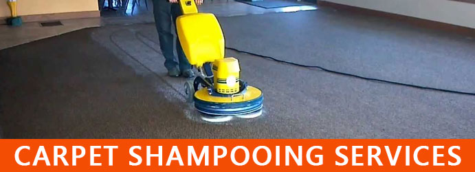 Carpet Shampooing Services Perth
