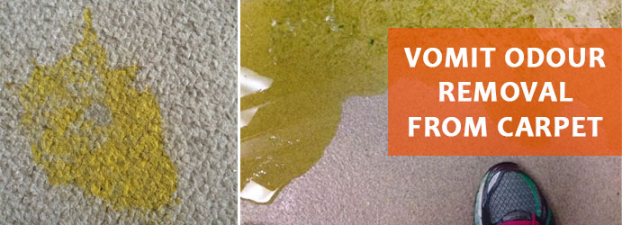Vomit Odour Removal From Carpet Melbourne