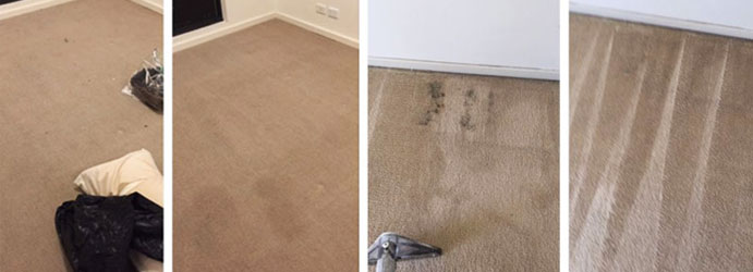 Carpet Cleaning Bruce