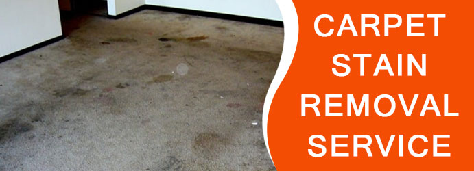 Carpet Stain Removal Service in Dickson