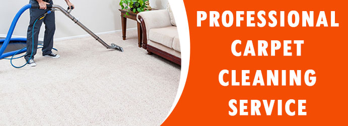 Professional Carpet Cleaning Service in Bonython
