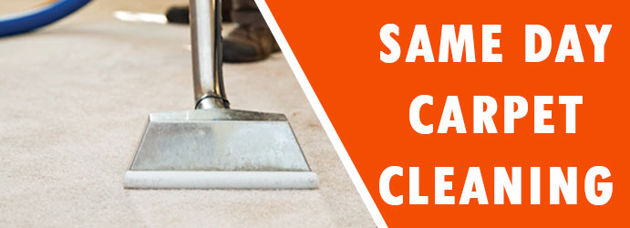 Same Day Carpet Cleaning in Bruce