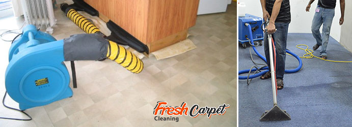 Carpet Flood Recovery Melbourne