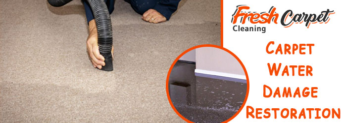 Carpet Water Damage Restoration Fairhaven