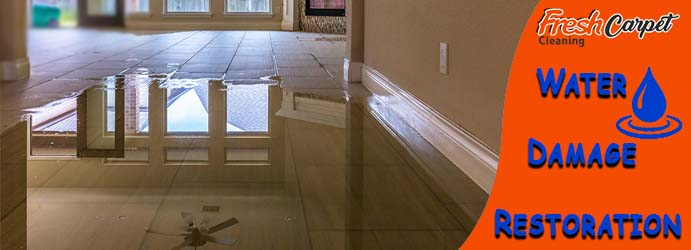 Water Damage Restoration Services Fairhaven