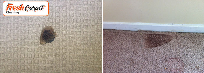 Carpet Burn Repair Waterloo
