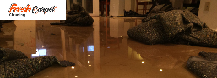 Carpet Water Damage Restoration Adelaide