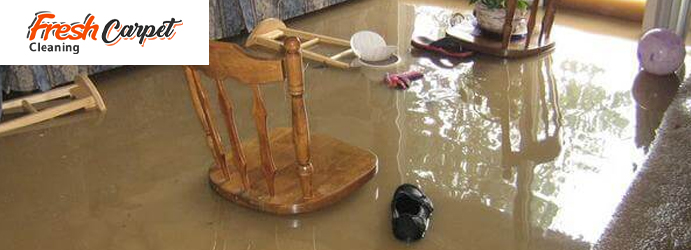 Carpet Water Damage Restoration Perth