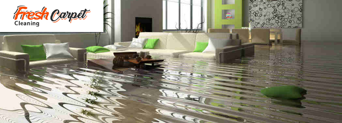 Water Damage Restoration Eschol Park